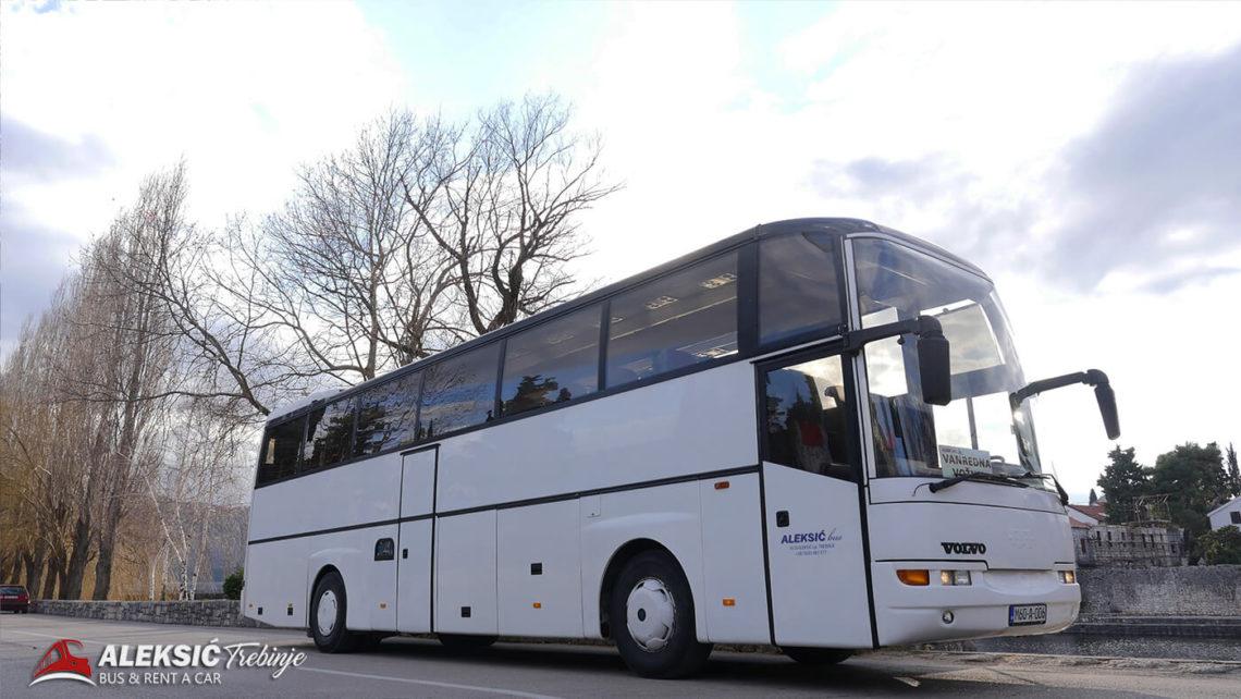 aleksic bus (2)