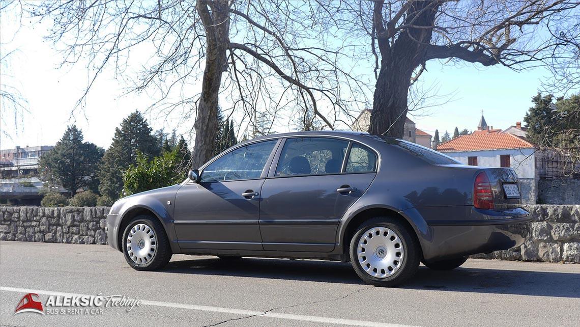 aleksic renat a car (3)