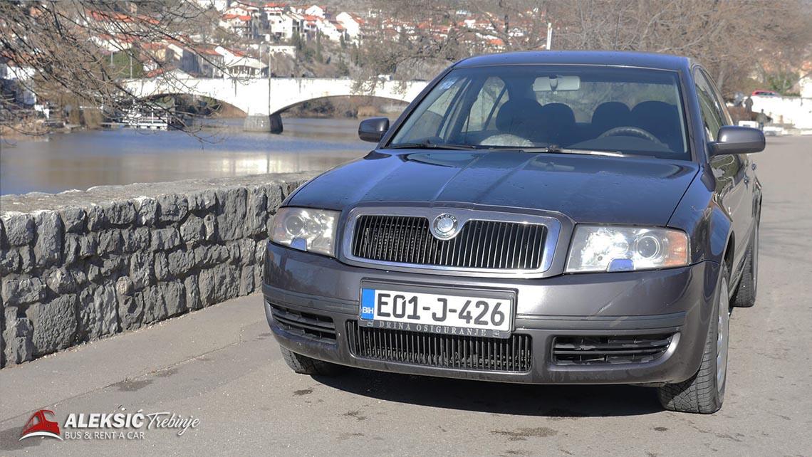 aleksic renat a car (4)