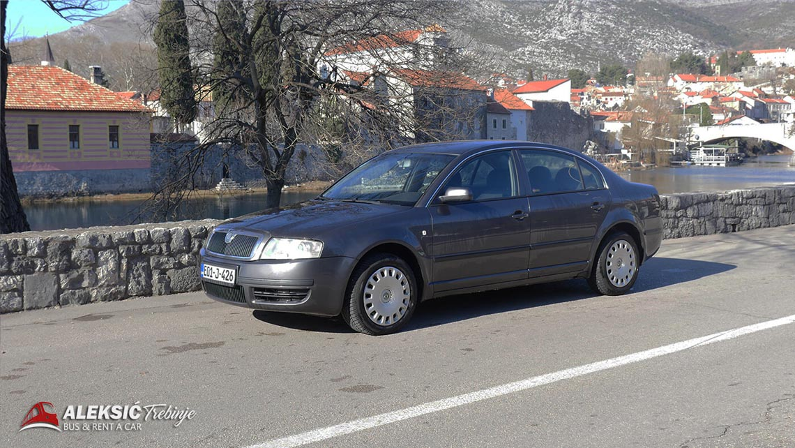 aleksic renat a car (5)